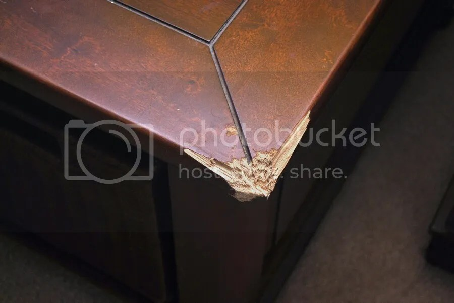 Dog chewed table