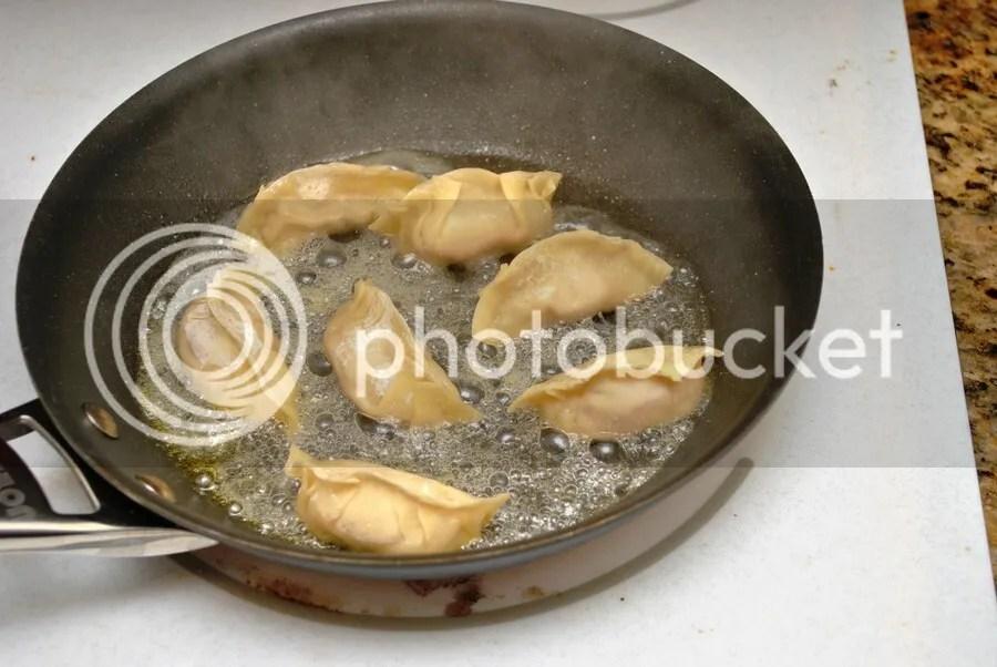 cooking homemade potstickers