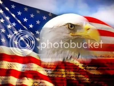 Awesome Bald Eagle Art