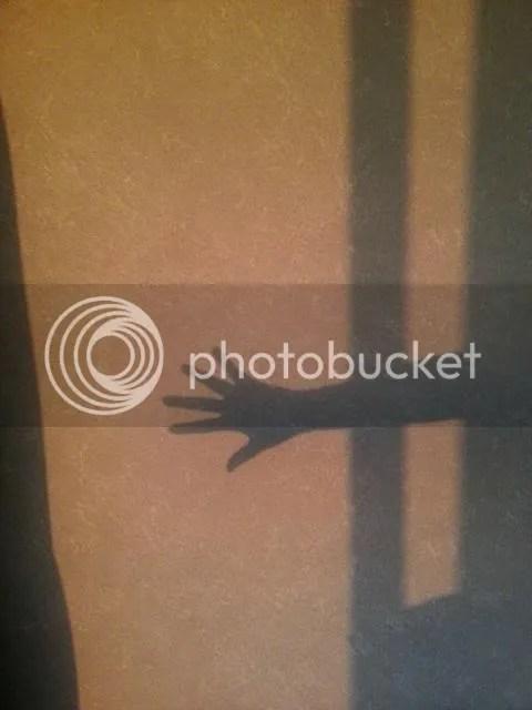 photo toucingcoloredwallpaperoftwilight.jpg