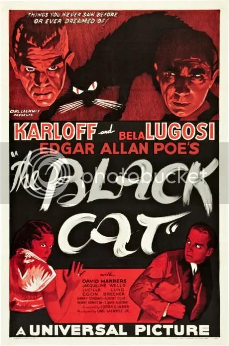 blackcat7