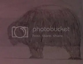 Mysterious Shaggy Beast