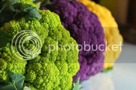 Colorflour