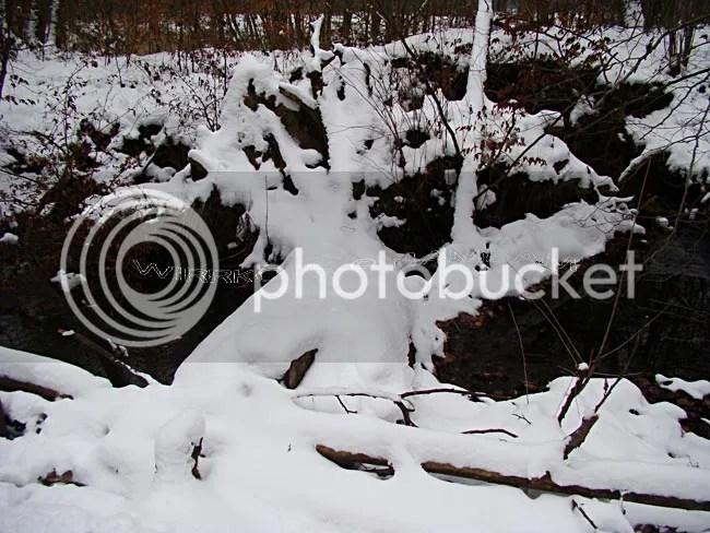 photo 2013-01-25-002_zps42b90b4e.jpg