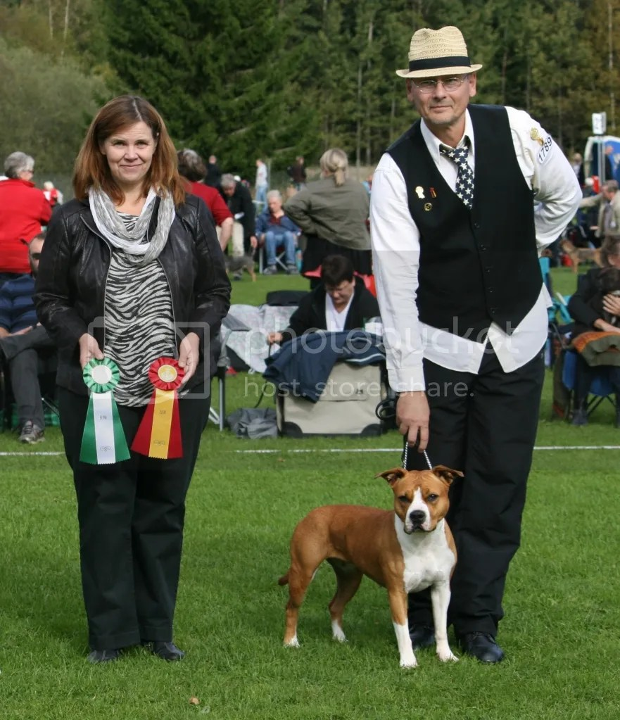 BIG 2 thanks to judge Anne Tove Strande Norway (entries 250)  BOB thanks to judge -Breed Specialist Karin Bergbom Finland (entries 20) Sweden CAC Show Gimo 9.9.2012 (entries 2036)