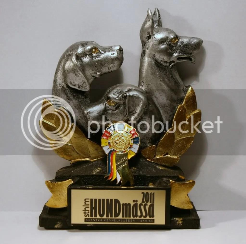 NORDIC WINNER 2011