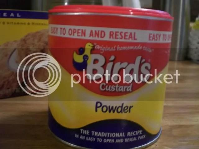 Birds Custard