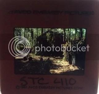 photo EFF56AC4-5D23-476A-83AA-F4D256ECC526.jpg
