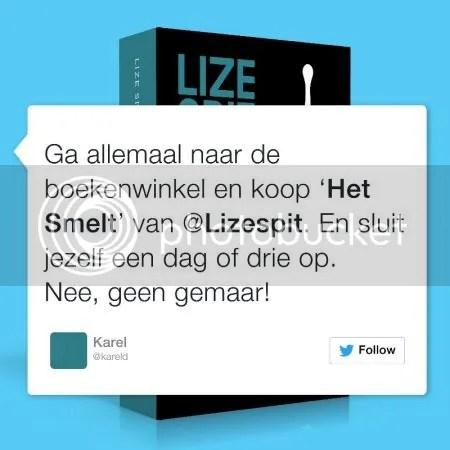 photo LizeSpitHetSmelt02.jpg