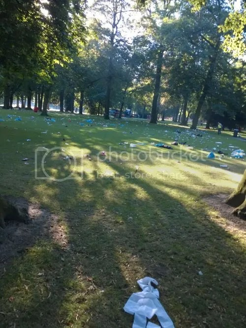 photo WP_20160720_001The day after Palmparkies.jpg