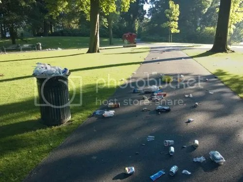photo WP_20160720_002The day after Palmparkies.jpg