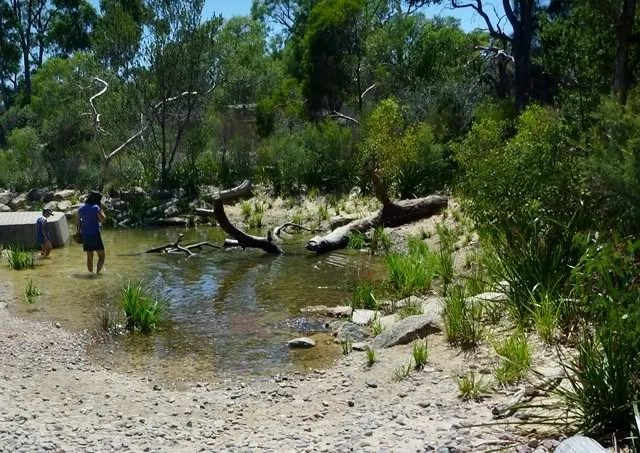 Headwaters of Paperbark Creek