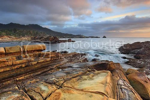 Bird Rock - Point Lobos, California