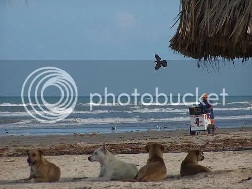 Playa Bagdad. Un basurero hecho atractivo turistico acá en Matamoros