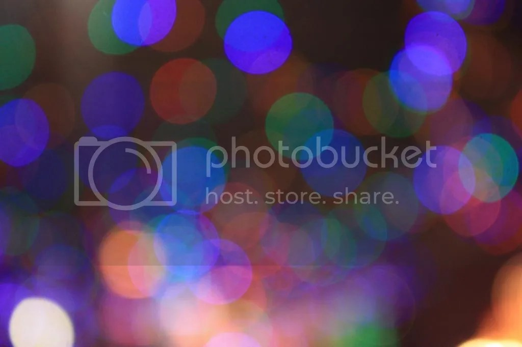 photo IMG_65161_zps24d80014.jpg