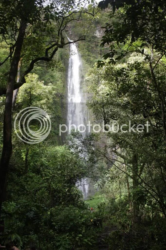 photo MauiTrip146_zps10cadcbb.jpg