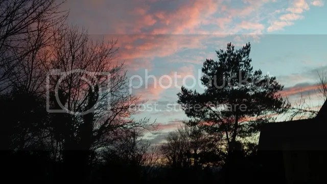photo 022_zpsxl3fvcm4.jpg