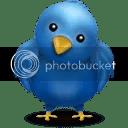 smaller twitter