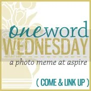 One Word Wednesday at Aspire