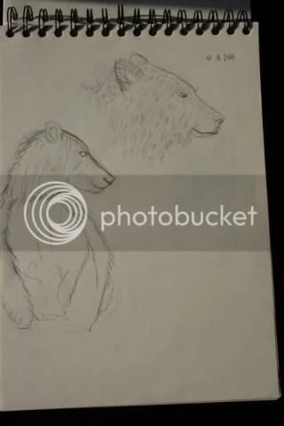 Sketchbook pt.11 - Twee beren