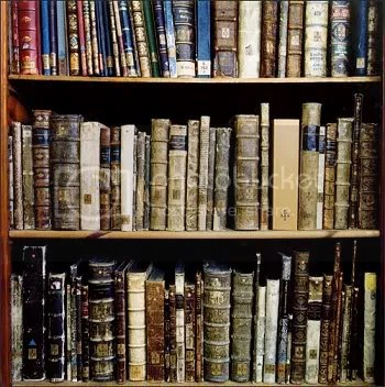 library_books.jpg Books image by ambermdawn