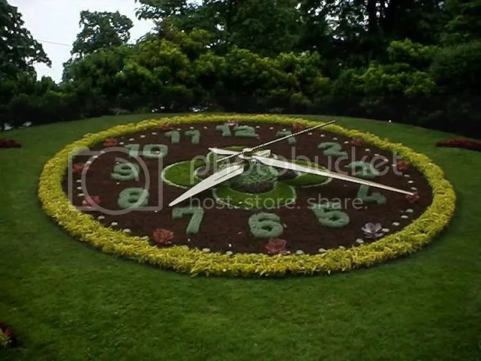 FLOWER CLOCK  PICTURES 5