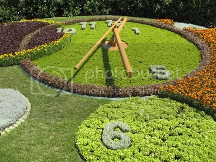 FLOWER CLOCK  PICTURES 3