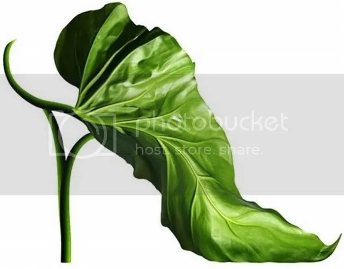 funny nature shoes picture 4