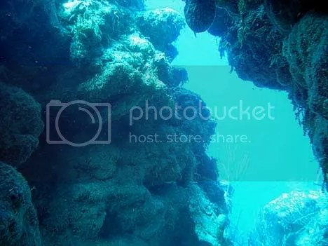 Misteri Great Blue Hole