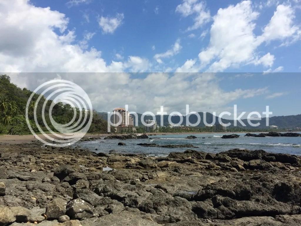 photo 493592C4-B14D-4D72-9E48-B5DB3F360295.jpg
