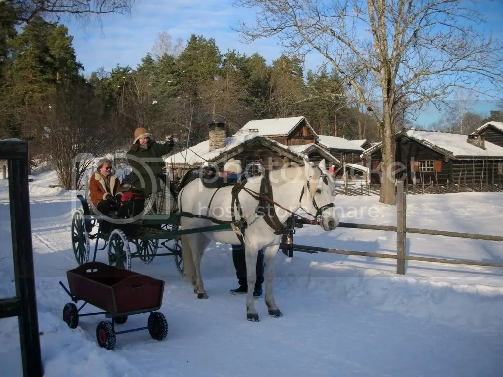 Old Fashioned Carriage Ride