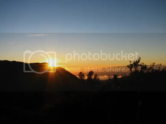 golden dawn over bromo; clear blue sky and fresh dew on the leaves...