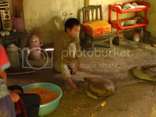 Inside the hut that served as a stall, the younger brother was hard at work, pounding dried maize in a gunny sack to separate the corn from the stalk.