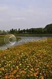 photo DSC_9897.jpg