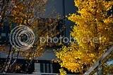 photo DSC_1474.jpg