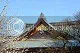 photo DSC_3101.jpg