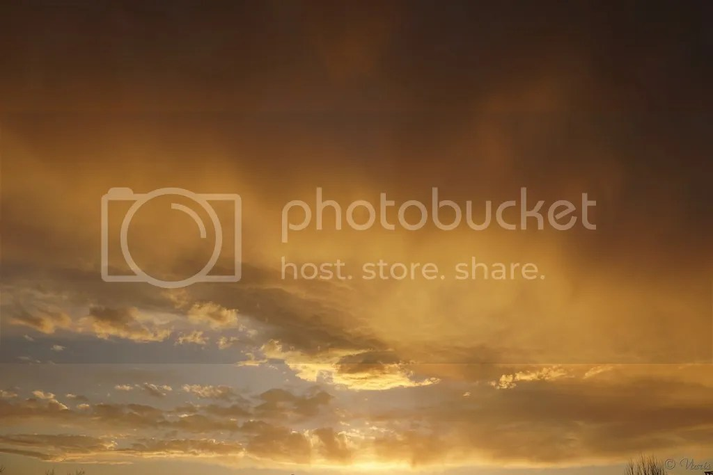 photo DSC02586.jpg