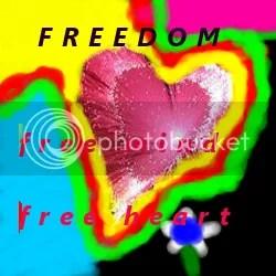 freedom mentor reviews