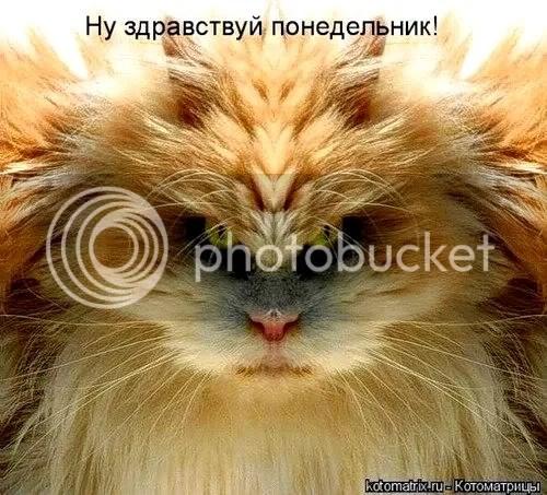 Картинки с моего компа - 4: egil_belshevic — LiveJournal