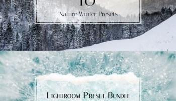 10 Modern Vintage Lightroom Presets - Heroturko Download