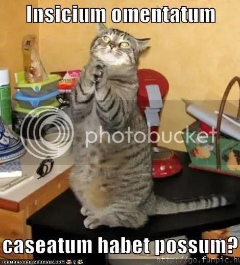 Habetpossum