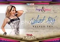 2010 TNA Icons Velvet Sky Autograph