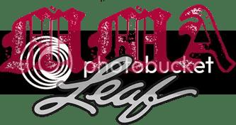 2010 Leaf MMA Logo