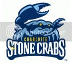 Charlotte Stone Crabs Team Logo