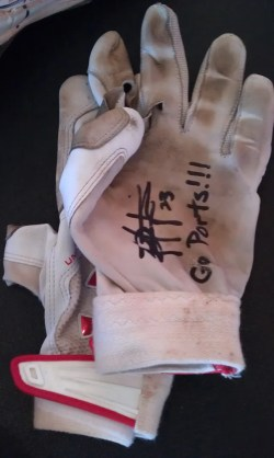 Rashun Dixon Game Used Batting Gloves