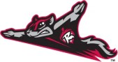 Richmond Flying Squirrels Team Logo