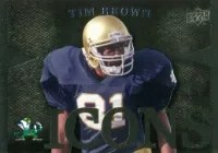 2013 Notre Dame Tim Brown Icons