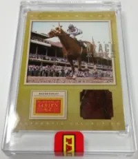 2013 Panini Black Box Secretariat Relic Card