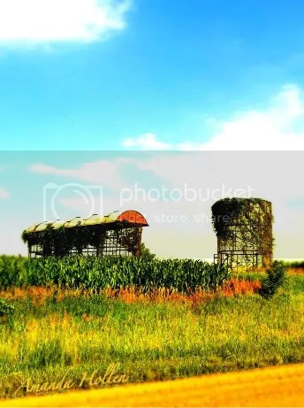 Sunny Silo in Shafer Twp
