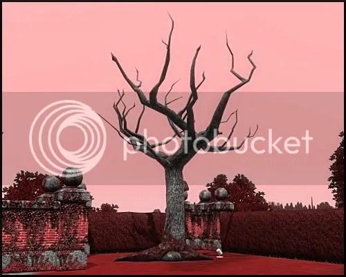 omg vampire tree!!